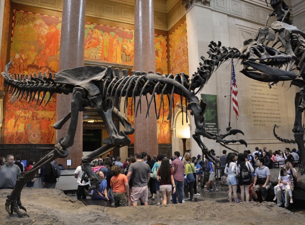 Знаменитый Музей естественной истории в Нью-Йорке. Фото: depositphotos.com