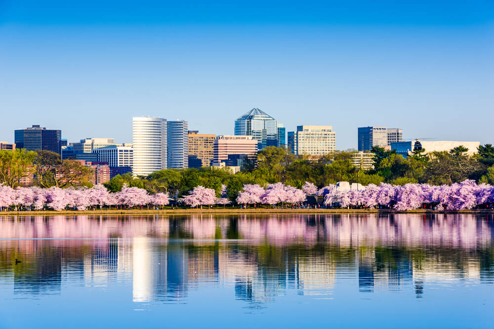 Вашингтон. Фото: depositphotos.com
