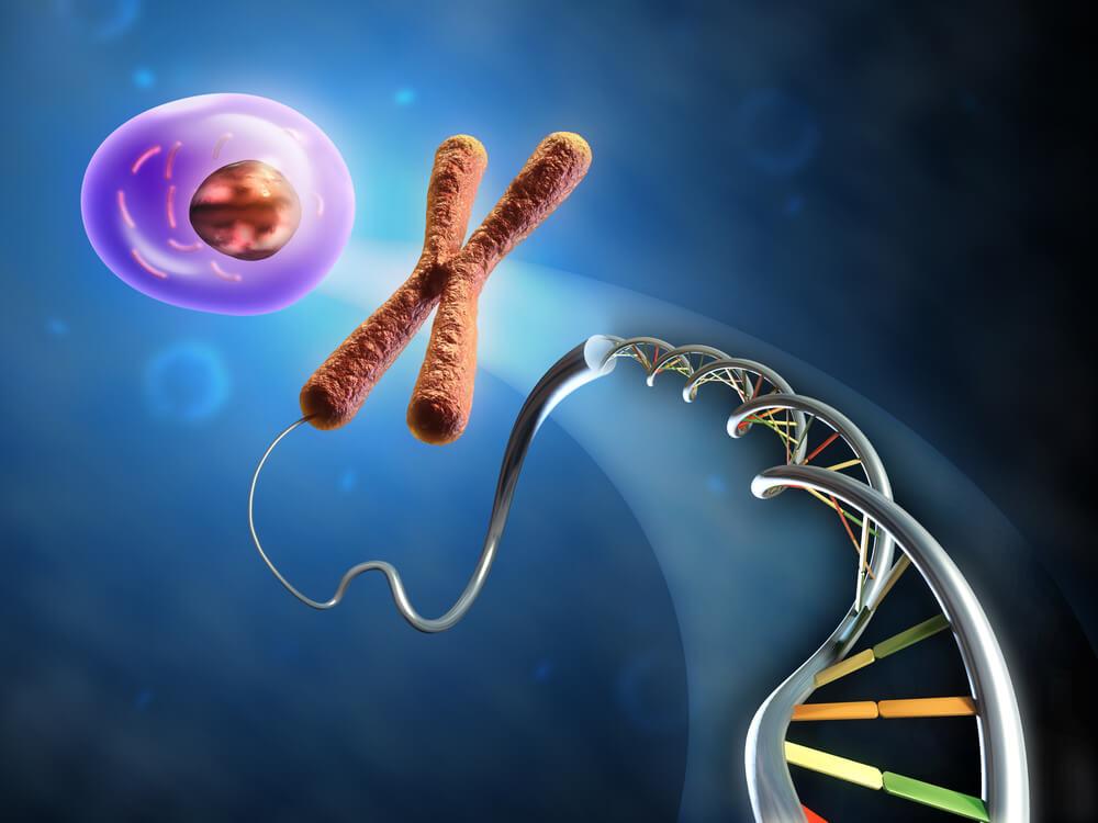 Картинки по запросу гены