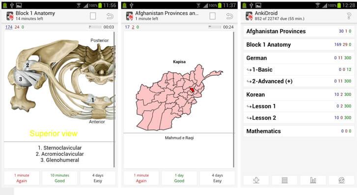 Anki предлагает самые разнообразные темы. Скрин-шот приложения.