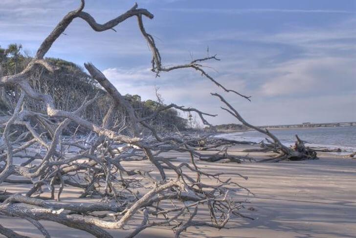 Big-Talbot-Island-via-floridastateparks.org_