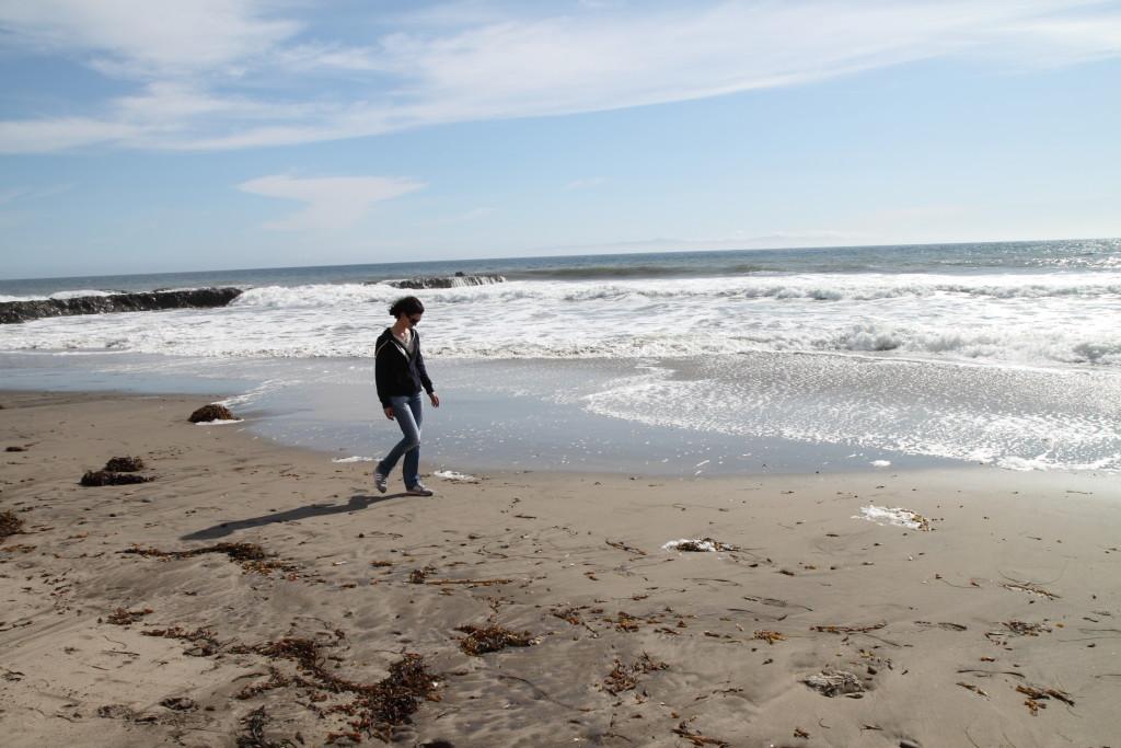 Прогулки в Санта Барбаре вдоль Тихого океана. Фото из личного архива