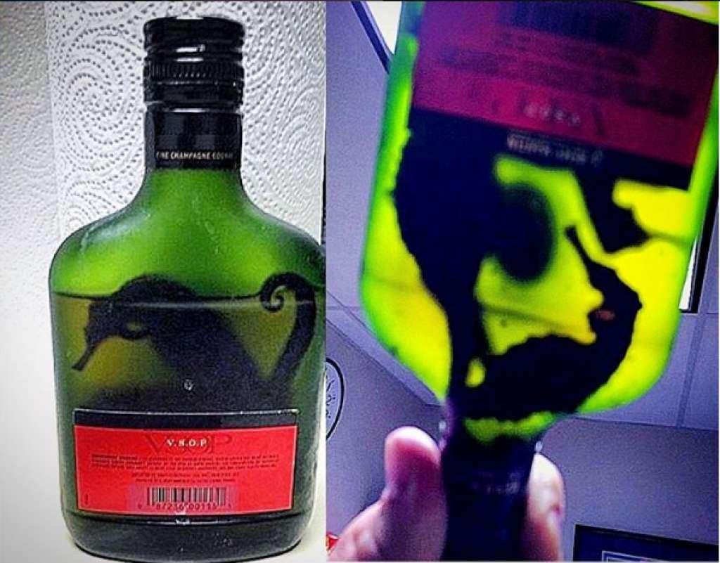 Морские коньки в бутылке из-под алкоголя. Фото: instagram.com/tsa/