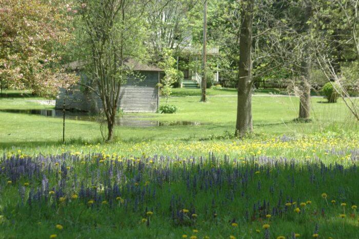 Природный парк Corbett's Glen – Rochester Фото: Yelp