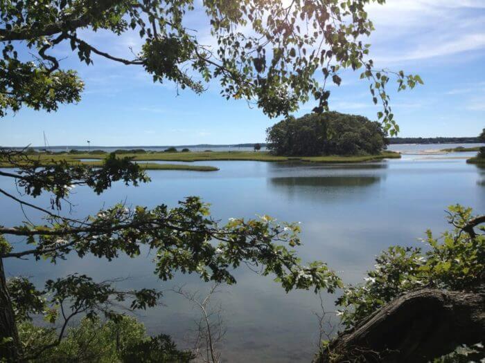Mashomack Preserve - Shelter Island Фото: Yelp