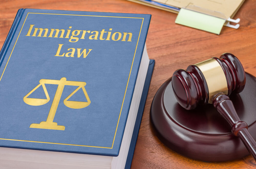 Law-abiding immigrants from New York are deported due to
