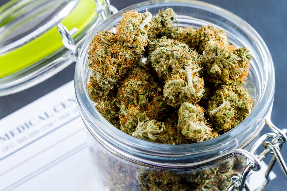 Медицинской марихуаны все о гидропонном выращивании марихуаны