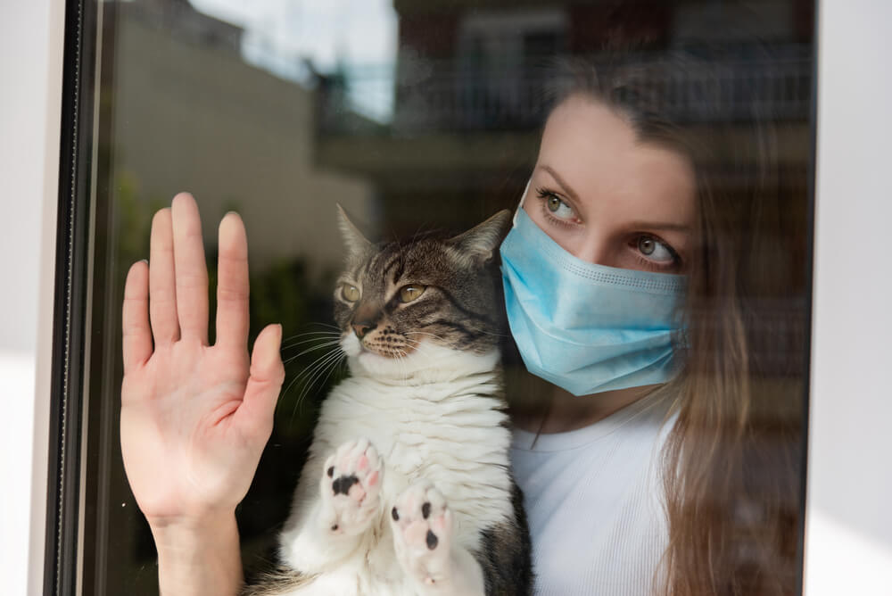 How Coronavirus is Changing Pet Care